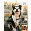 Animal Wellness Magazine @ Magazineline.com