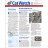 Cat Watch @ Magazineline.com